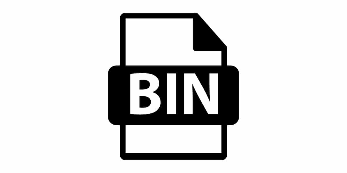 archivo bin