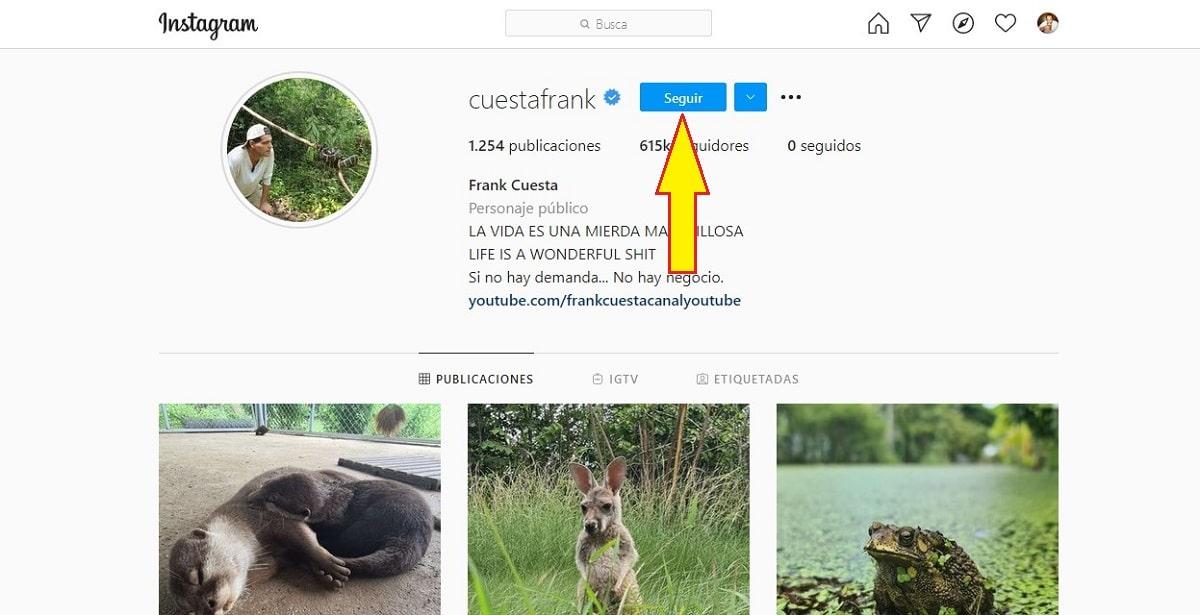 Seguir cueneta Instagram en PC